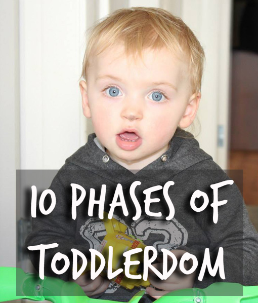 10 Phases of Toddlerdom